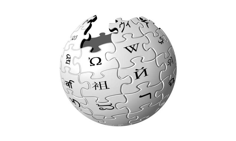 Turkish court rejects Wikipedia appeal on ban