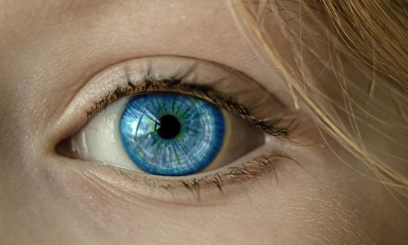 Scientists grow eye cells to fix corneas