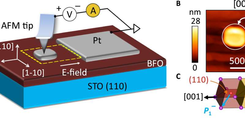 A functional prototype nonvolatile ferroelectric domain wall memory