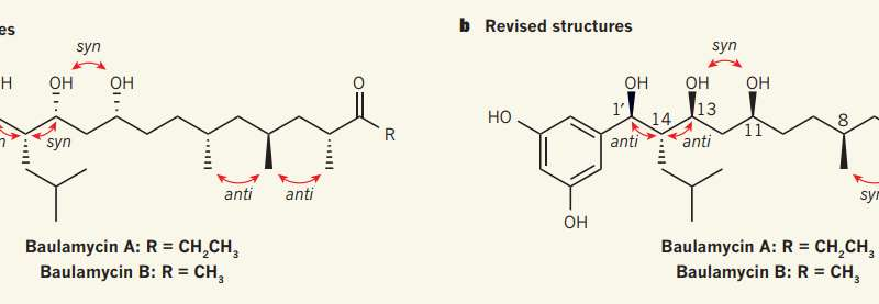 Chemists deduce the correct structure of the A and B baulamycins