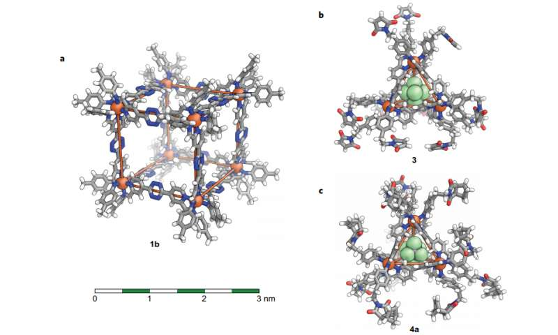 Covalent post-assembly modification cascade of self-assembled supramolecular structures
