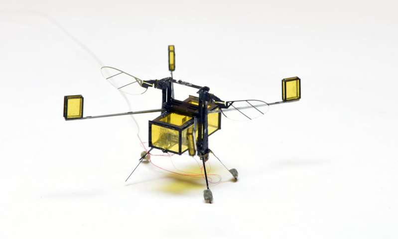 New RoboBee flies, dives, swims and explodes out the of water