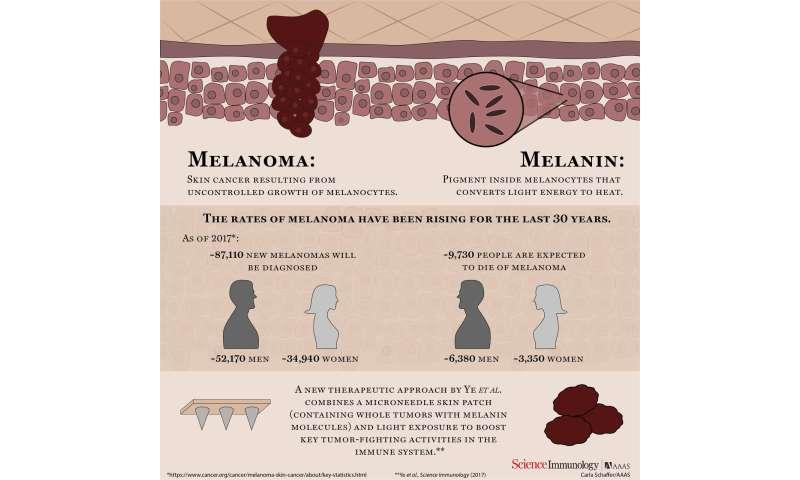 Cancer immunotherapy uses melanin against melanoma