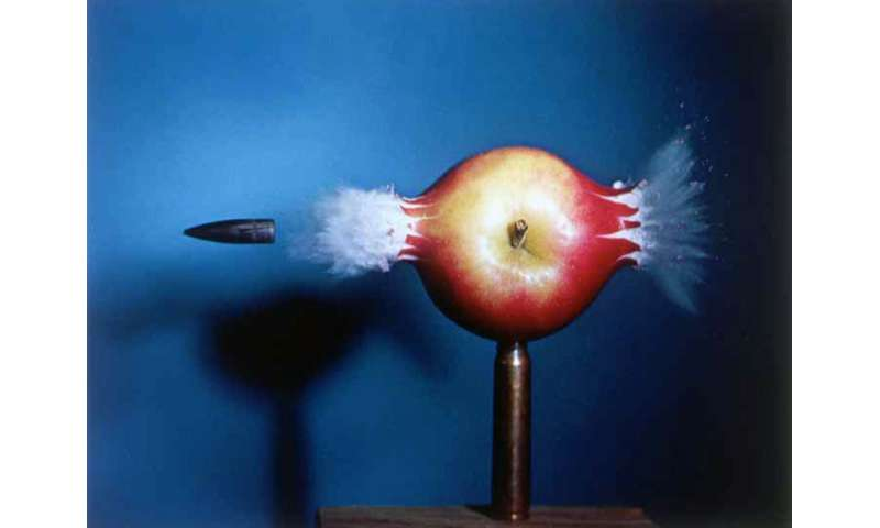 How an iconic photograph of an apple inspired an improved cellular analysis