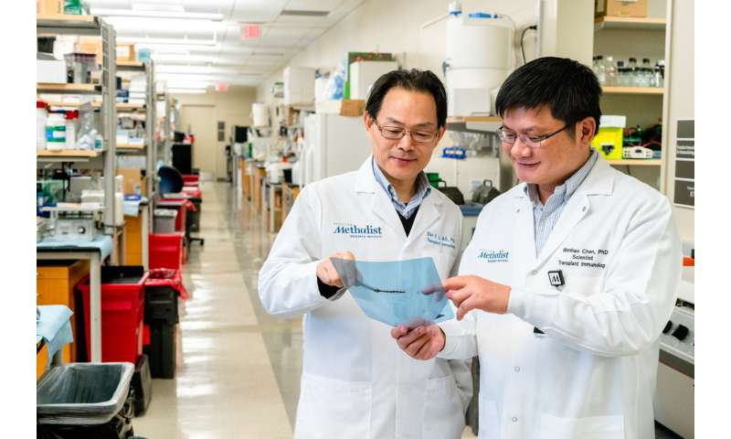 Researchers find key to making transplant rejection a thing of the past