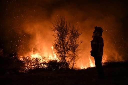 A firefighter observes the flames while trying to extinguish a fire in Cabanoes near Louzan as wildfires rage in Portugal in Oct