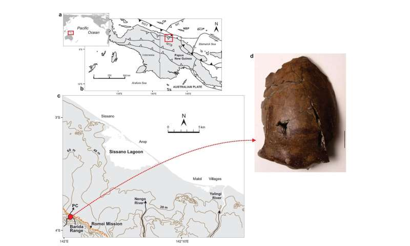 6,000-year-old skull could be from the world's earliest known tsunami victim