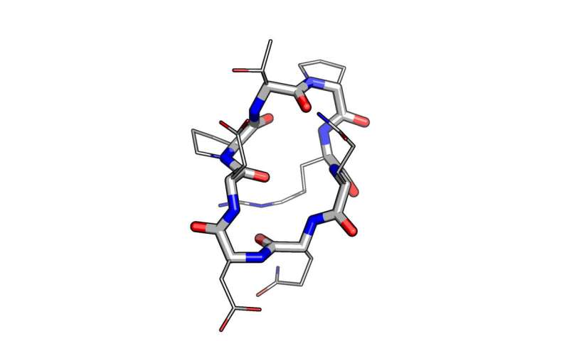 Computational strategies overcome obstacles in peptide therapeutics development
