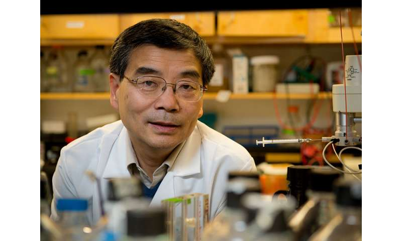 Researchers find supposed tumor-suppressing protein actually promotes cancer