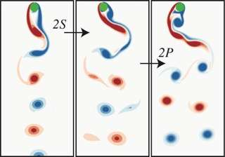Researchers found that rotation causes the zig-zag of rising particles