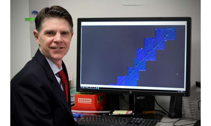 Revolutionary imaging technique uses CRISPR to map DNA mutations