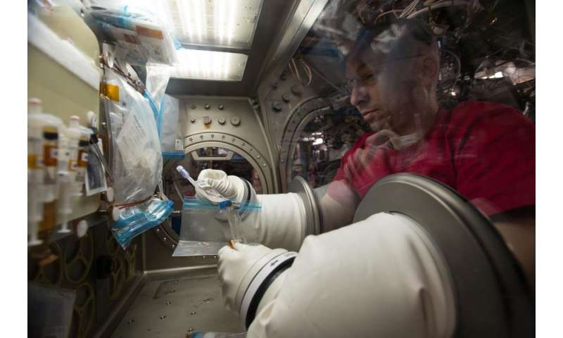 Space station crew takes a breather with lung tissue investigation