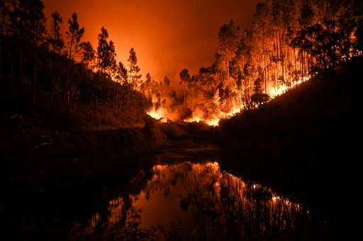 About 60 forest fires broke out in central Portugal, killing at least 62