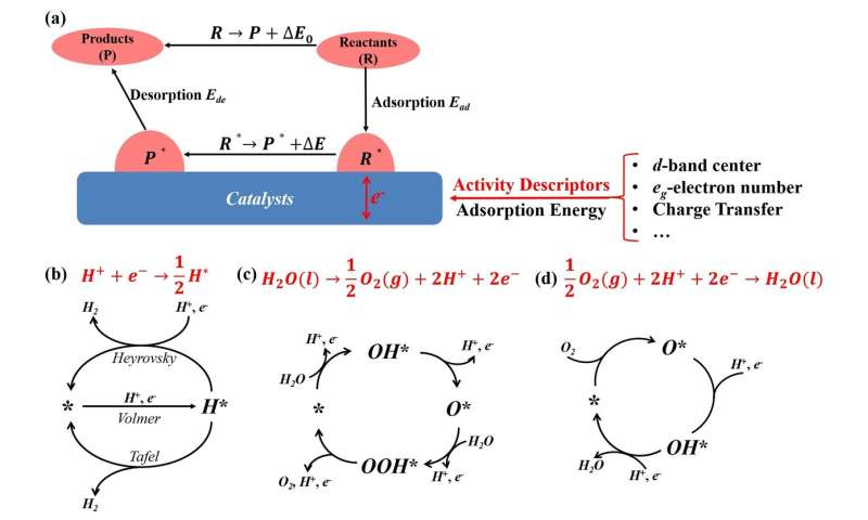 Activity descriptors for electrocatalysts in energy storage applications