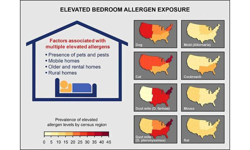 Allergens widespread in largest study of U.S. homes