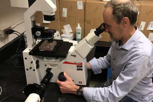 A major step in treating genetic diseases