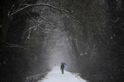 A man walks under snowfall in a forest in Strasbourg, eastern France, on January 10, 2017, as a cold wave hits most parts of Eur