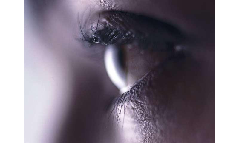 ω-3 essential fatty acids may protect corneal nerves in dry eye