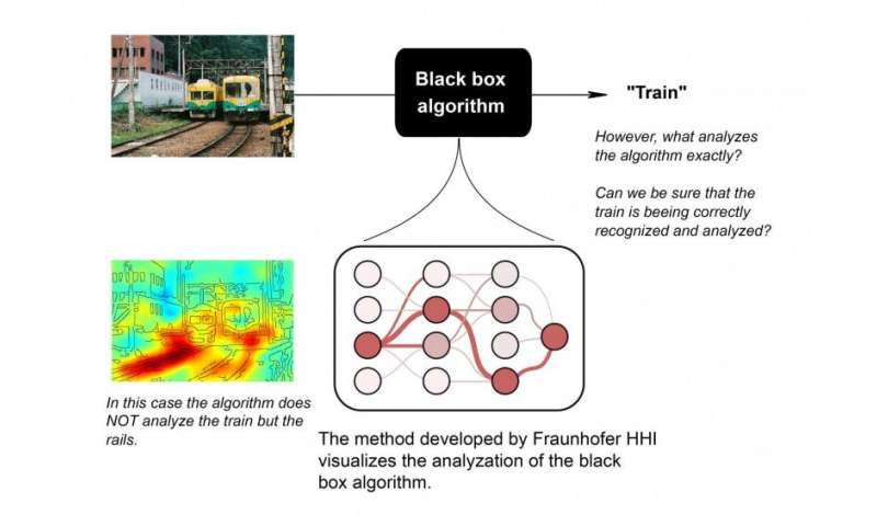 Analysis software uses algorithms to visualize complex learning processes