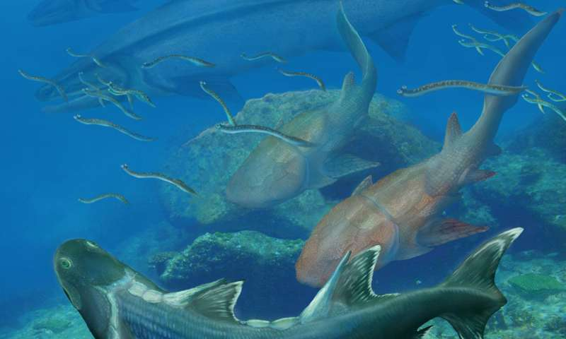 Ancient southern China fish may have evolved prior to the 'Age of Fish'