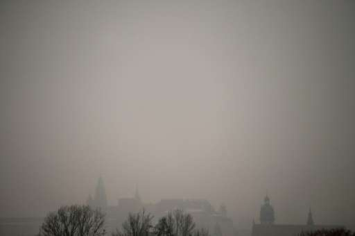 """A report issued last month by the International Energy Agency identified air pollution as """"one of the largest environmental"""
