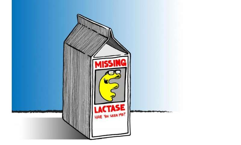 Are prebiotics the answer for lactose intolerance?