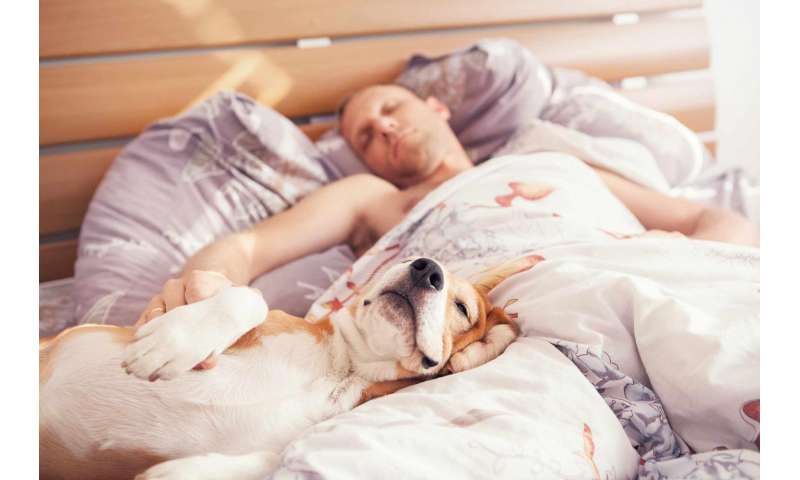 Are you barking up the wrong tree by sleeping with your dog?