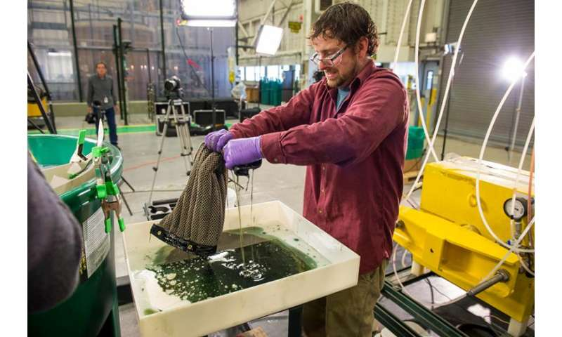 Argonne invents reusable sponge that soaks up oil, could revolutionize oil spill and diesel cleanup