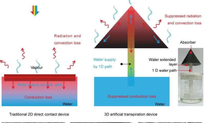 Artificial transpiration for solar water purification
