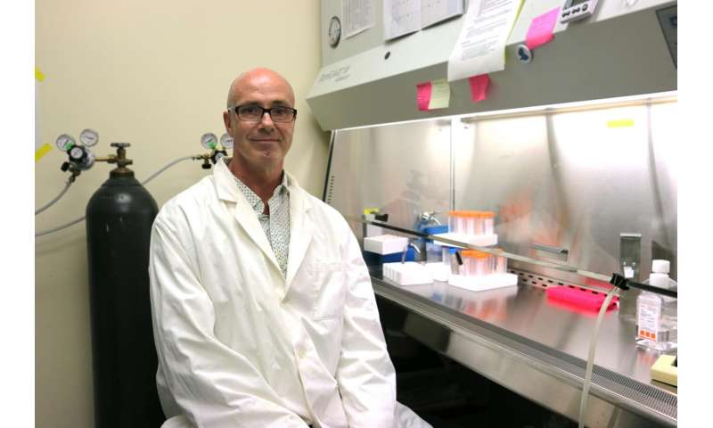 Astaxanthin compound found to switch on the FOX03 'Longevity Gene' in mice
