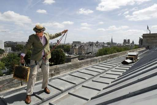Audric de Campeau is a French urban beekeeper, and his beehives sit atop monuments and office buildings and on rooftop terraces