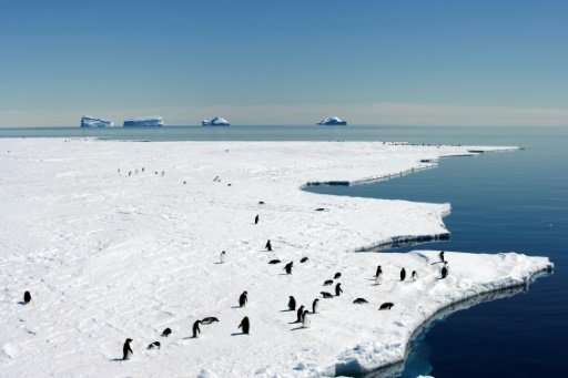 Australia and France kick off a fresh push to create a vast marine sanctuary in pristine East Antarctica