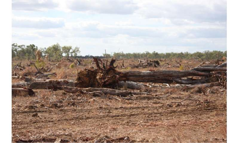 Australia is a global top-ten deforester – and Queensland is leading the way