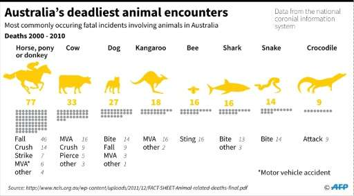 Australia's deadliest animal encounters