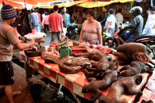 A vendor offers various exotic animals, including pythons and crested black macaques, to his customers at Tomohon market in nort