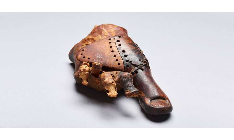 A wooden toe: Swiss Egyptologists study 3000-year-old prosthesis