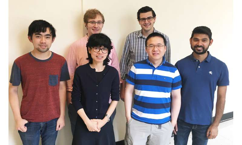 Aye group discovers avenue for precision cancer treatment