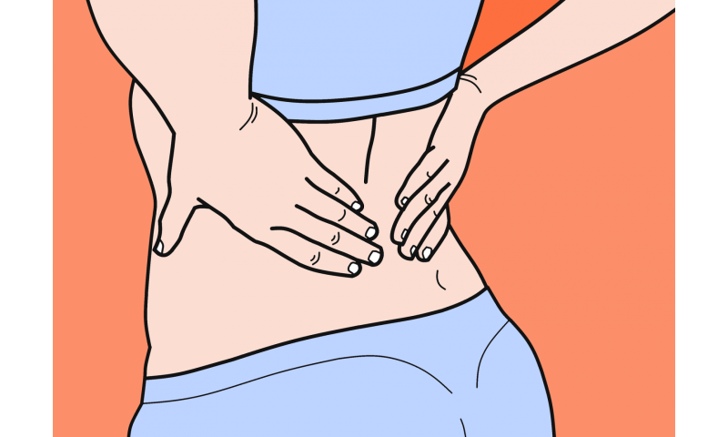 Diaphragm linked to chronic low back pain, study shows