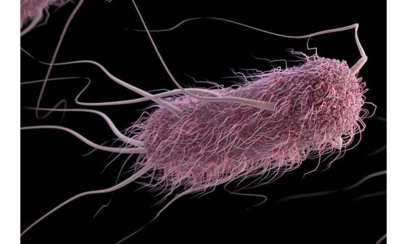 Bacteria change a liquid's properties and escape entrapment