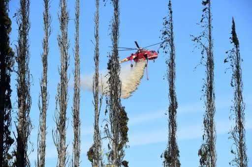 Beyond a wall of burned Cypress trees, a helicopter drops water over farms and homes in Bonsall, California