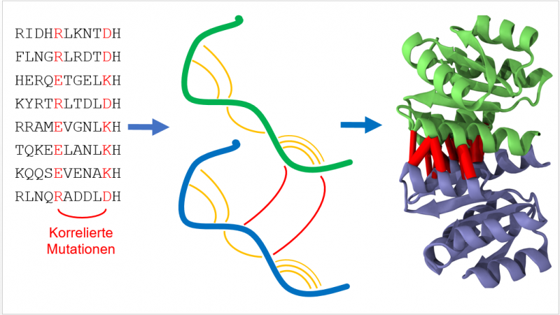 Big data approach to predict protein structure