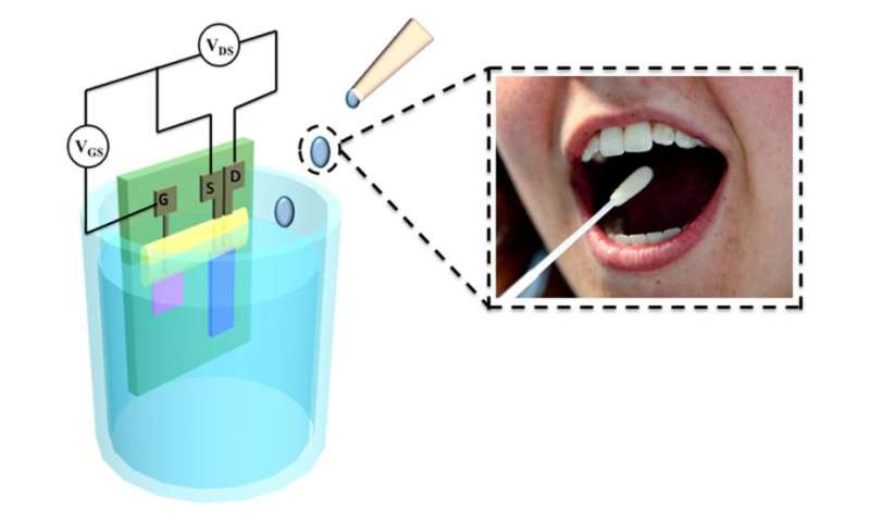 Biological sensor can detect glucose levels in saliva more accurately and cost-efficiently than blood test