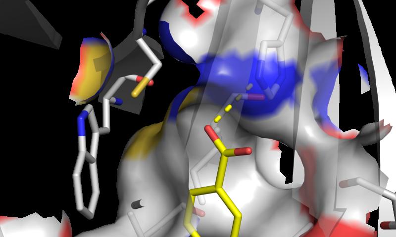 Blocking cancer-specific mutations in leukemia and brain tumors