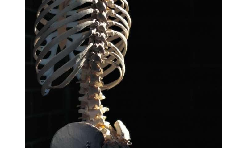 Bone fragility variants linked to concordant pediatric skeleton