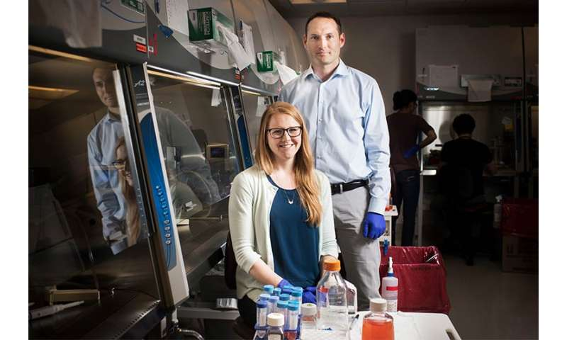 Boston University scientists turn human induced pluripotent stem cells into lung cells