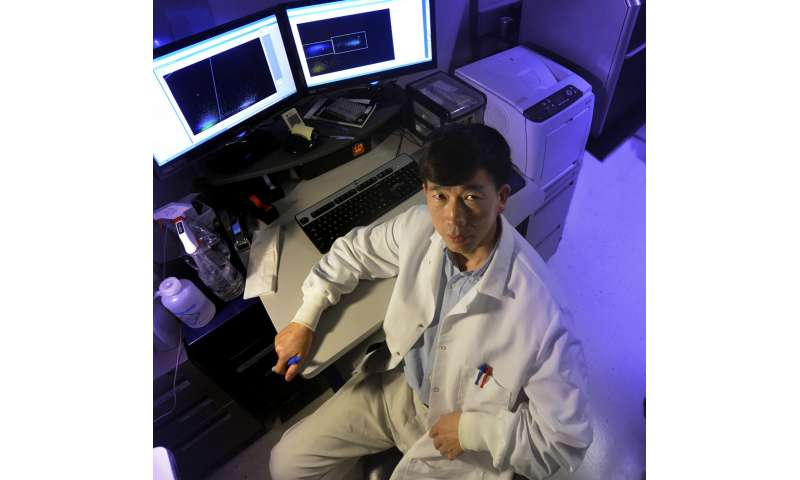 Cancer vaccines need to target T cells that can persist in the long fight against cancer