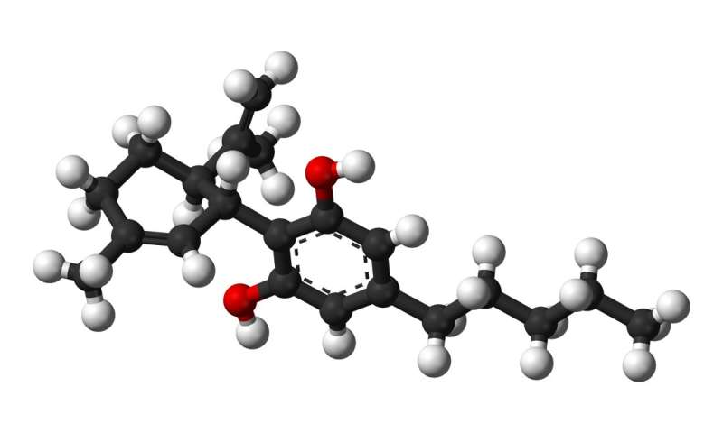 In test with rats, cannabidiol showed sustained effects