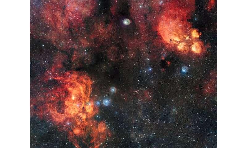 Celestial cat meets cosmic lobster