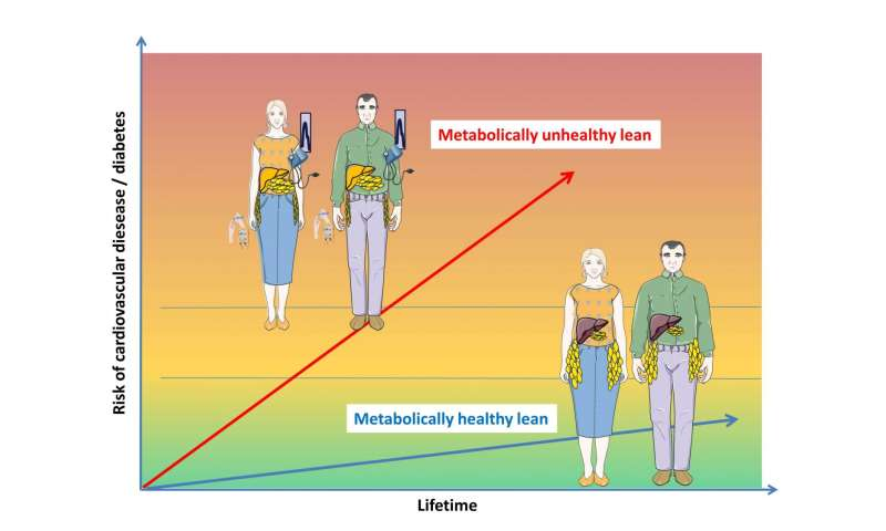Characteristics of metabolically unhealthy lean people