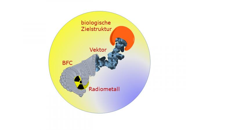 Chemists investigate indium and actinium compounds to develop radiopharmaceuticals